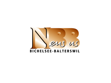 <strong>Gemeinde Bichelsee-Balterswil</strong><br>Mandat «Neus us Bichelsee-Balterswil»